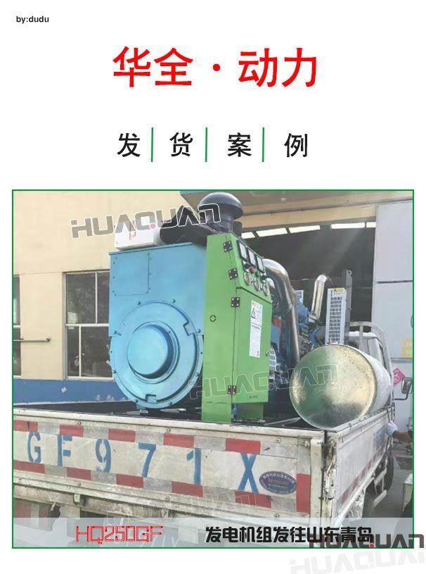 沼气发电机是一个系统工程